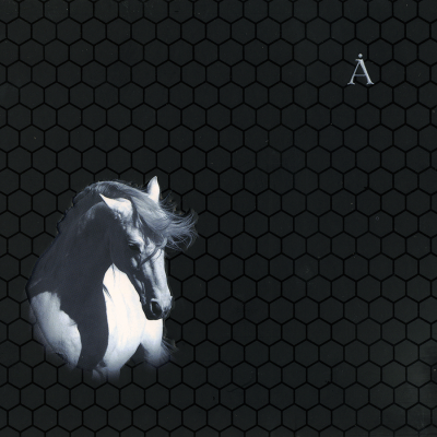 Борис Гребенщиков - Белая Лошадь