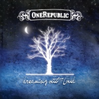 OneRepublic - All Fall Down