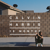 Calvin Harris - Drinking From The Bottle