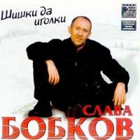Слава Бобков - Дальнобойная