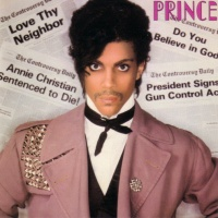 Prince - Private Joy