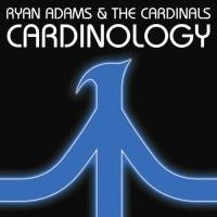 - Cardinology
