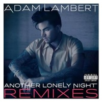 Another Lonely Night (Oliver Moldan Remix)