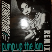 Pump Up The Jam (Remix)