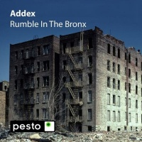 - Rumble in the Bronx