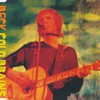 Beck Hansen - Gold Brains ( Geffen Records INTDM-97093) (Album)