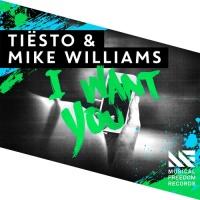 Tiesto - I Want You