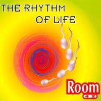 ROOM 42 - The Rhythm Of Life