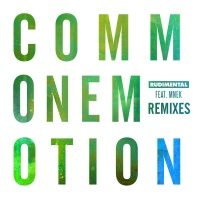 Common Emotion (The Golden Pony Remix)