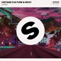 Vintage Culture - Later