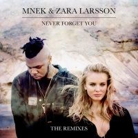 - Never Forget You - Remixes