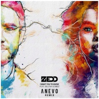 Zedd - I Want You To Know (Anevo Remix)
