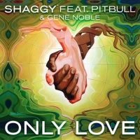 Shaggy - Only Love