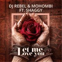 DJ Rebel - Let Me Love You