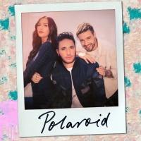 - Polaroid