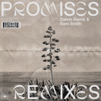 Calvin Harris - Promises (Remixes)