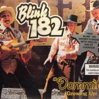 Blink-182 -