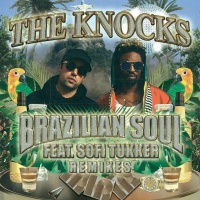 Brazilian Soul (FTampa Remix)
