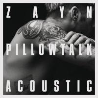 Pillowtalk (Live)