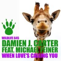When Love's Calling You (DJ Cross Remix)