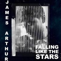 Falling Like The Stars - Single